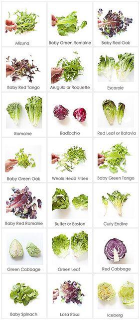 diversi tipi di insalatine, ricche di ferro e acido folico