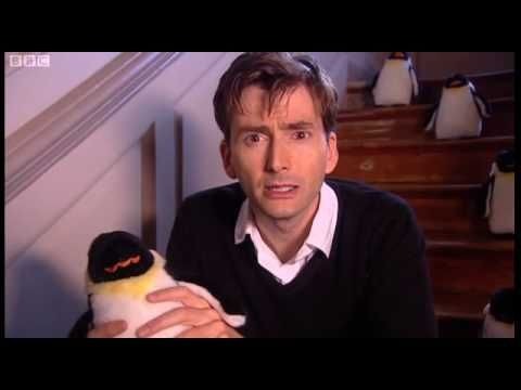 """David Tennant Reading """"How High Is the Sky"""" with Penguins."""