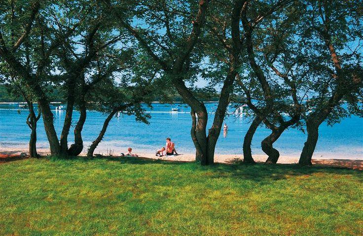 Veštar Camping, Rovinj, Croatia #camping #croatia #rovinj
