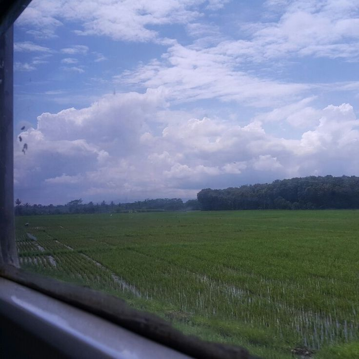 Rail window
