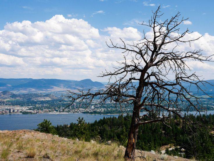 Hiking in Rose Valley Regional Park - West Kelowna, BC