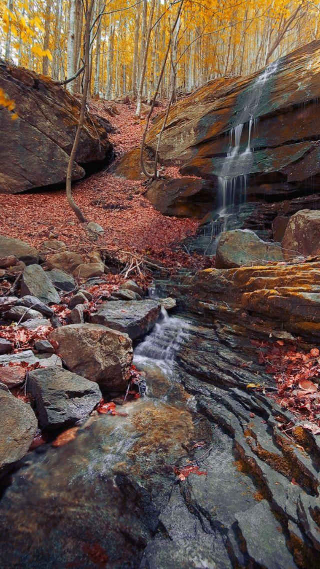 Fairytale path  source Flickr.com