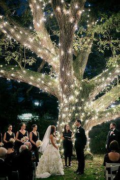 Lindíssimo esse efeito de iluminação tendo como ponto forte a árvore. Casamento noturno, ao ar livre na Pensylvania. Amei!!!