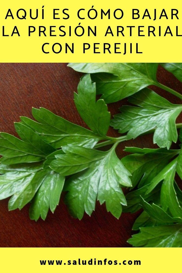plantas para reducir la tension arterial