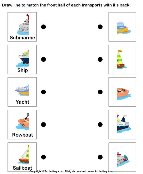 Water Transport worksheet and coloring pages