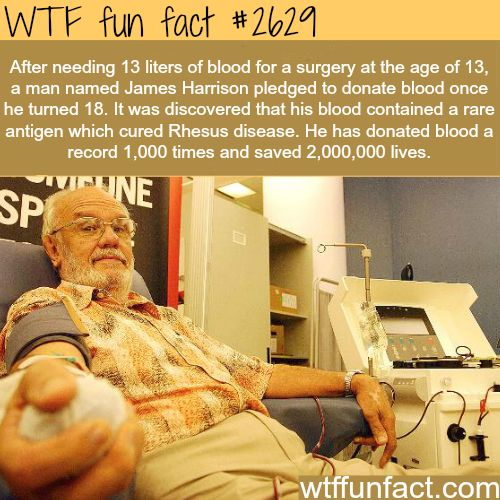 James Harrison, the blood donor who saved millions - WTF fun facts.