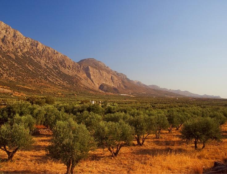 Το φαράγγι του Χα (μακρινή Λήψη) Λασίθι, από Παχιά άμμο προς Ιεράπετρα.