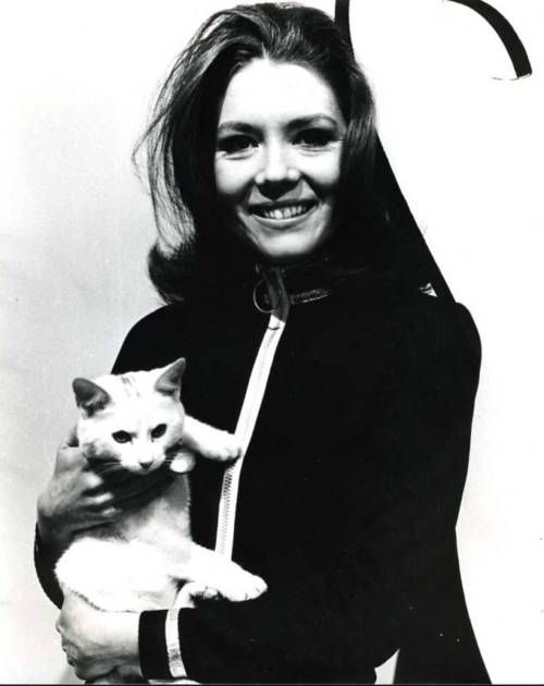 """diana-rigg, member of """"The avengers"""", wearer of black cat suits and cat lover."""