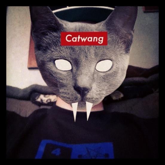 Catwang app on Iphone