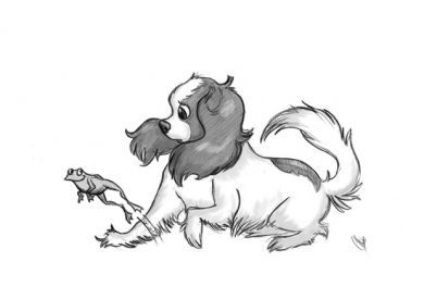 Cavalier King Charles Spaniel  http://cavalier-gift-shop.org