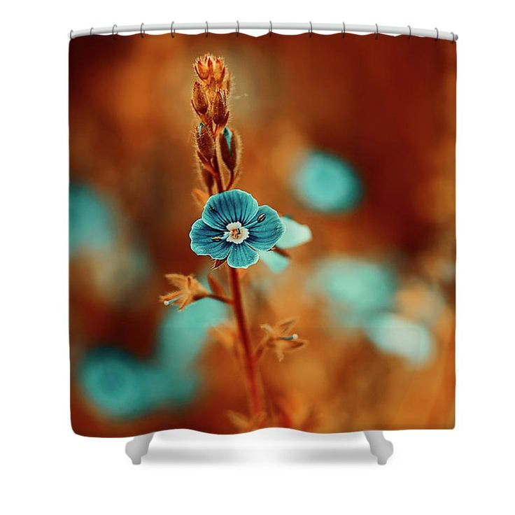 Beautiful Shower Curtain featuring the photograph Small Blue Forget-me-not On Orange by Oksana Ariskina. Small blue wildflower forget-me-not, closeup view on orange brown toned background. Available as mugs, posters, greeting cards, phone cases, throw pillows, framed fine art prints, metal, acrylic or canvas prints, shower curtains, duvet covers with my fine art photography online: www.oksana-ariskina.pixels.com #OksanaAriskina