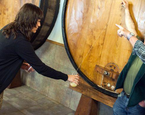Pooring cider at a Sagardotegi (Cider House)