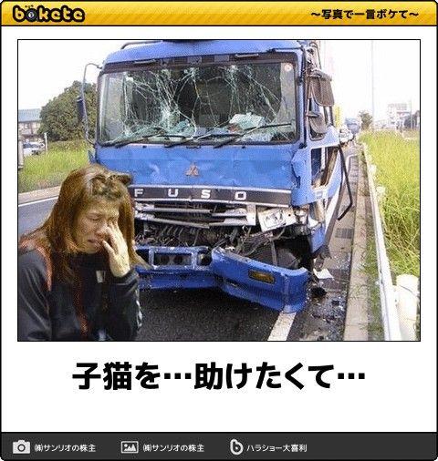子猫を助けたくて…crash!!