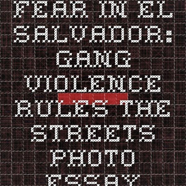 gang violence essay