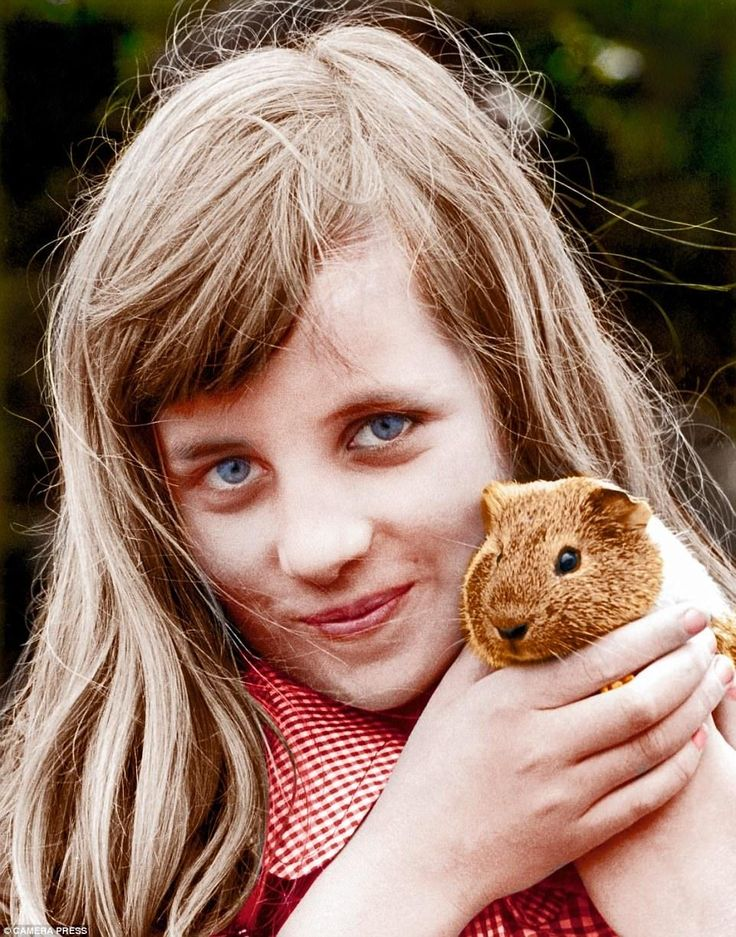Diana's mother said she 'loved everything small and furry' and here she is, aged about ten, with a guinea pig