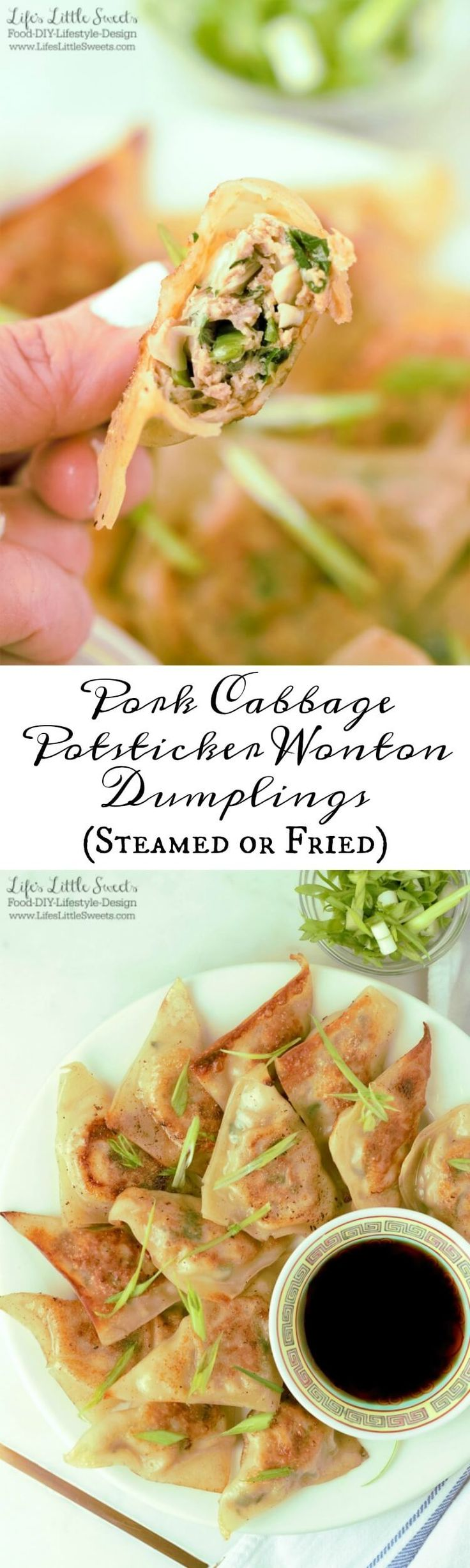 Pork Cabbage Potsticker Wonton Dumplings (Steamed or Fried) are savory pockets of deliciousness. Enjoy them when entertaining, game day or as a main dish. This is a versatile, approachable, dumpling recipe.