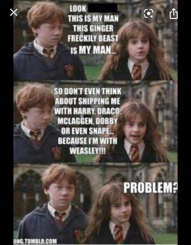 Pin By Karolina Wallander Bjork On Harry Potter Harry Potter Memes Harry Potter Jokes Harry Potter Puns