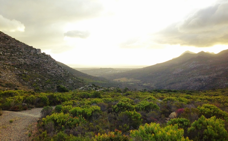 Last look back at Ou Kaapse Weg before heading over to Kalk Bay.