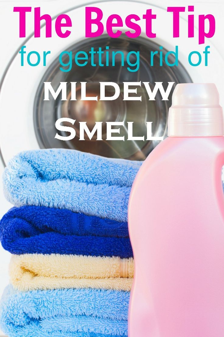 Best Tip for Getting Rid of Mildew Smell