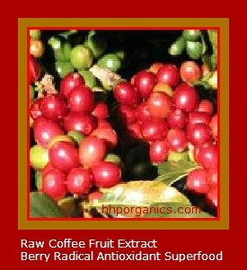 coffee fruit extract fruit in vagina