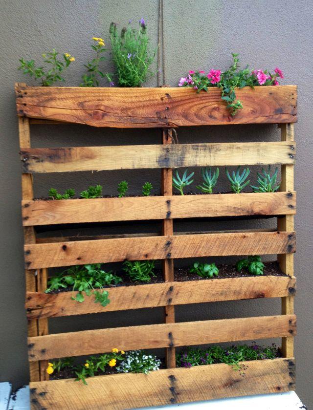 Best 25 garden dividers ideas on pinterest plants for for Garden divider ideas