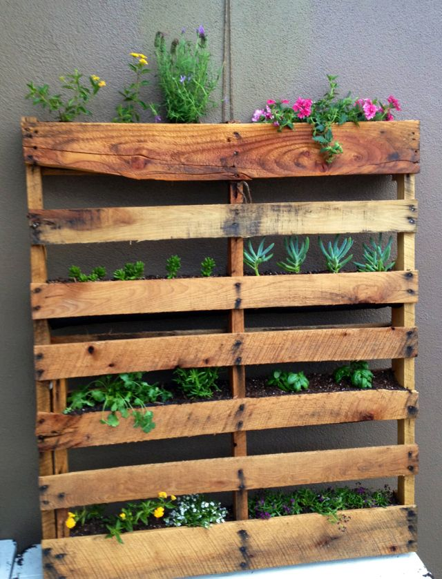 The 25 best garden dividers ideas on pinterest garden for Vertical pallet garden bed
