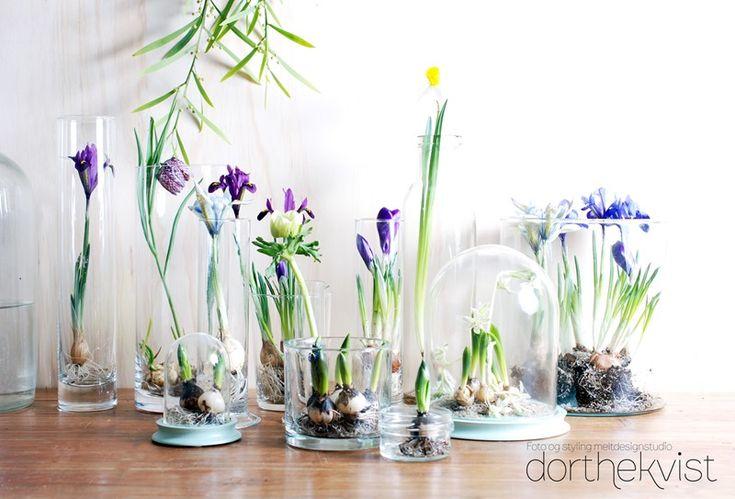 DIY ::: Forår på glas - MeltdesignstudioMeltdesignstudio