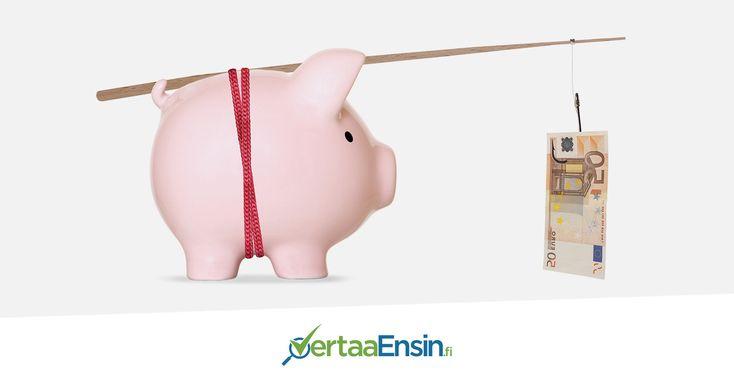 Lue hauskimmat säästövinkit blogistamme!