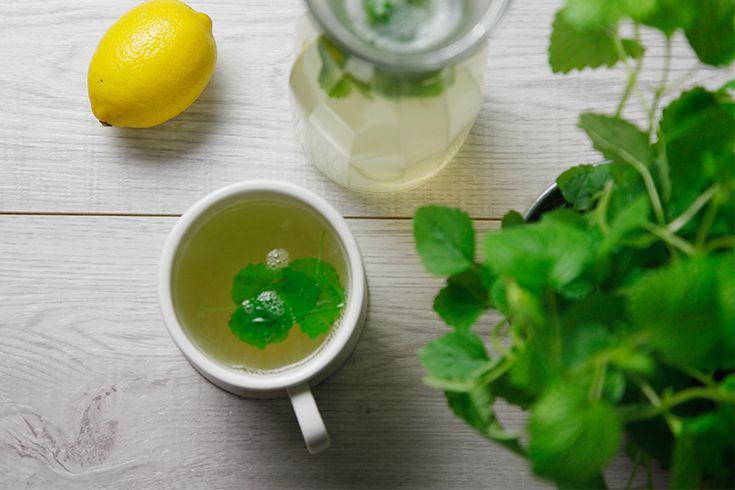 Kaum ist der Herbst da ist der Wasserkocher bei mir auch wieder voll im Einsatz. In der kalten Jahreszeit gibt es einfach nichts besseres als heißen Tee und ich trinke dann auch schon mal 1 bis 2 Liter am Tag.Damit ich nicht immer nur Ingwertee trinke, dachte ich mir es wird mal ZEit für ein bisschen Abwechslung und da ich momentan sowieso von starken Kopfschmerzen geplagt werde, habe ich mal ein bisschen das Internet durchforstet und herausgefunden, dass Zitronenmelisse Tee dagegen sehr gut…