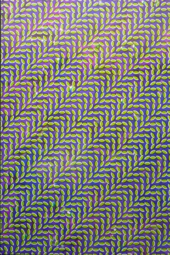 Animal Collective  Merriweather Post Pavilion  Rare 2sided Advertising Poster 24x36 ** For more information, visit image link.Note:It is affiliate link to Amazon.