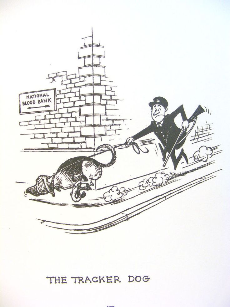 Funny Thelwell Original Vintage Art Cartoon Print Dog Types '64 Gift Holiday Free Ship #Vintage