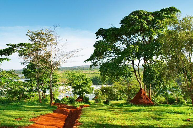 Τοπίο στον ποταμό Νείλο, Ουγκάντα
