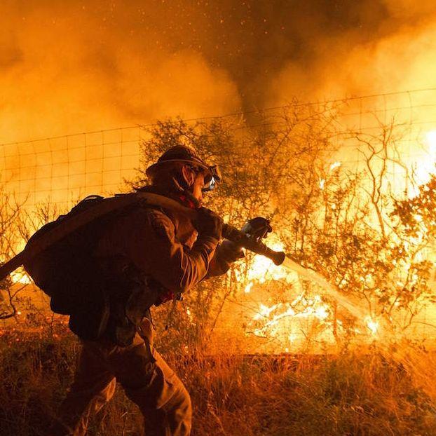 Un vigile del fuoco prova a spegnere un incendio che si sta avvicinando a un vigneto. L'incendio ha bruciato più di mille acri e diverse strutture nella zona