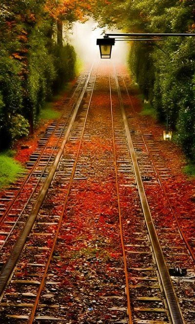 Railroad tracks in autumn..
