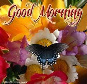 Beautiful Wallpapers Of Good Morning God Bless You   Yahoo Canada Image  Search Results