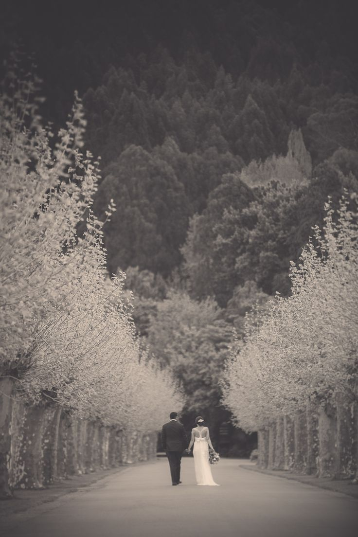 More from Innes and Carries wedding with thanks to Eva Bradley Photography - Mission Estate Winery, HAWKES BAY