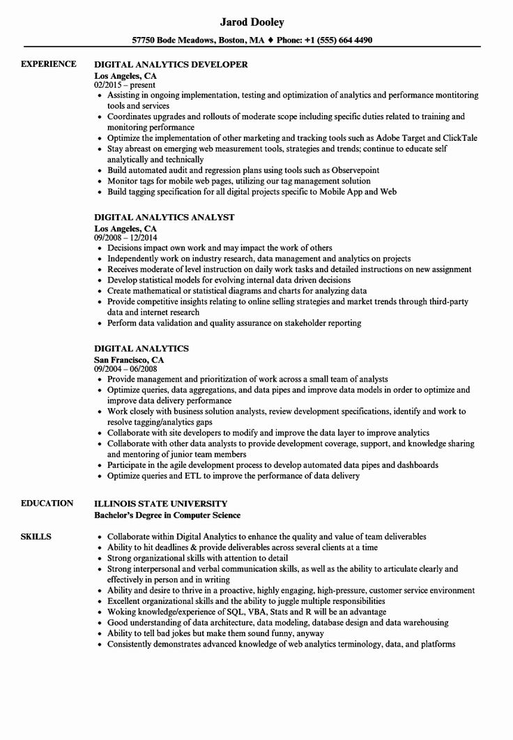 Digital Analytics Resume Samples in 2020 Manager resume