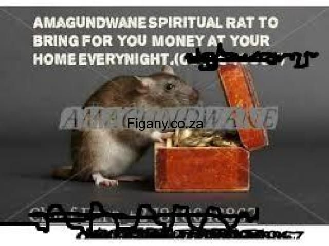 SPIRITS~INVISIBLE {JINNS}>FOR HIRE CALL+27737785444~101% ((Jinn powers)) the invisible spirits in forms of {{RATS/SHORT boys}}~when did you know that jinns/ invisible spirits exist_they worked for the mighty king whose kingdom will never exist in the history at diverse// so strong was the kingdom and after he passed away jinns were freed to circulate // master physic/wizard and  a king will help you in this call/whts now for hire  and become super rich urgently/ HEALERS / PASTORS…