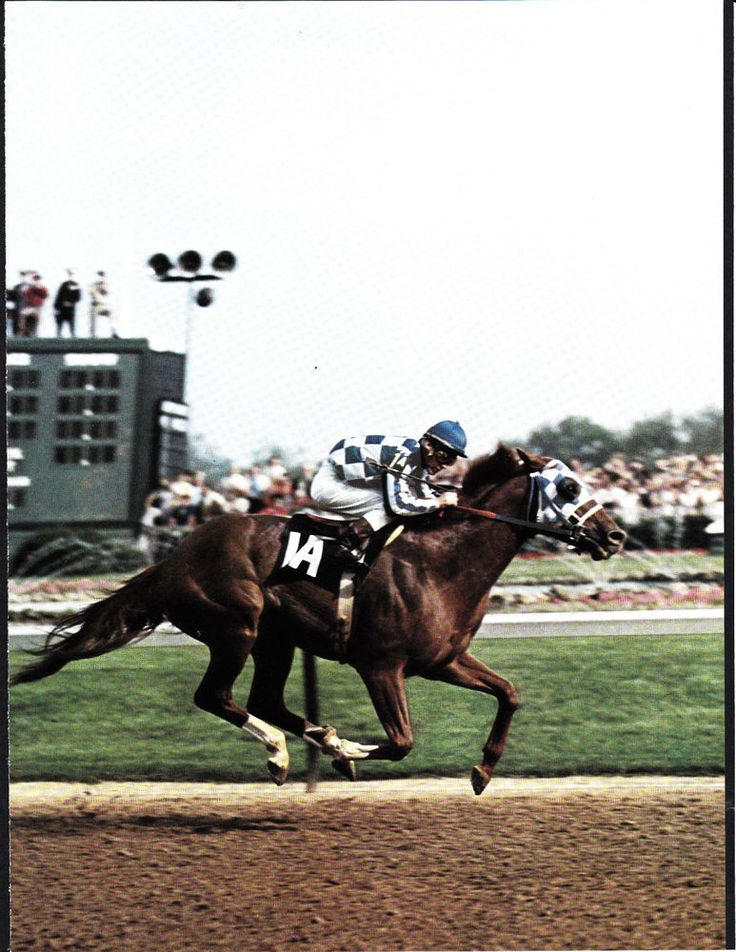 SECRETARIAT 1973 Kentucky Derby Churchill Downs Horse Racing in Sports Mem, Cards & Fan Shop, Fan Apparel & Souvenirs, Horse Racing   eBay