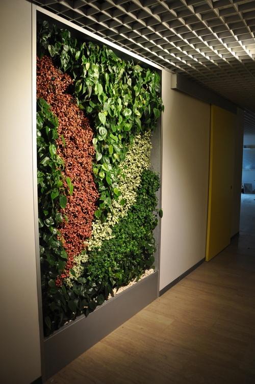 Costa Crociere Tecverde giardini verticali, green walls