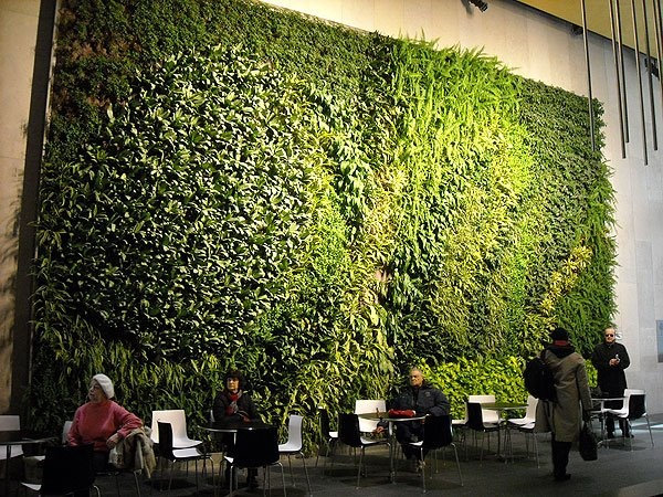 1000+ images about Giardino verticale on Pinterest