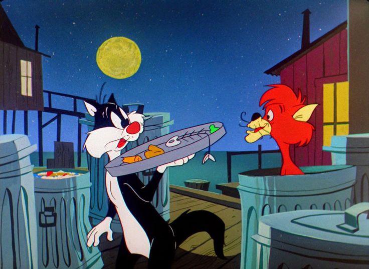 224 Best Sylvester Images On Pinterest