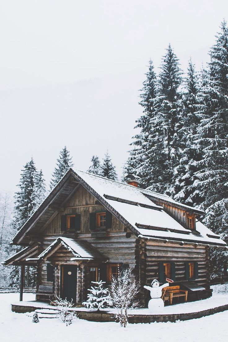 Trappers and woodsmen cabins pinterest follow me for Log cabin gunsmithing