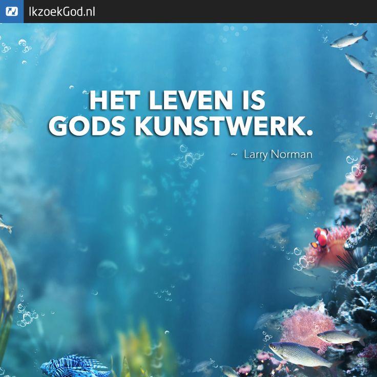 Het leven is Gods kunstwerk (Larry Norman) #art #kunst #kunstwerk #godisanartist #aquarium #vis #water #life #leven