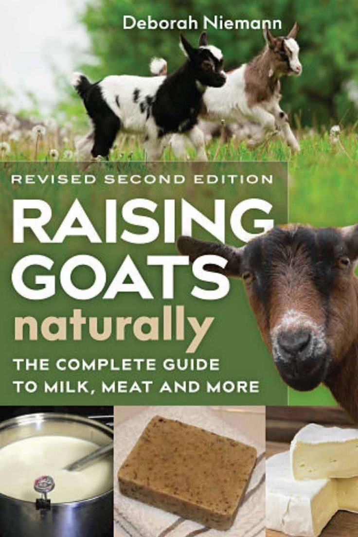 Raising Goats Naturally Second Edition With Images Raising Goats Goats Goat Farming