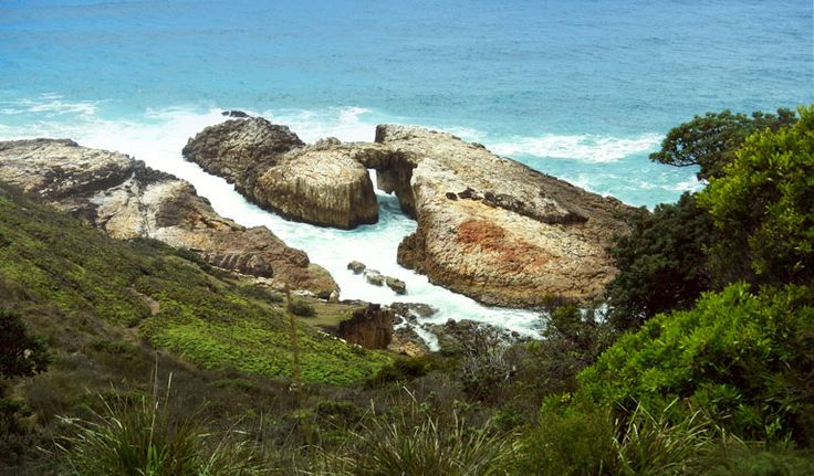 Diamond Head loop walk offers scenic coastal views across Crowdy Bay National Park. Expect beaches, lookouts, and glinting rock faces, giving Diamond Head its name.