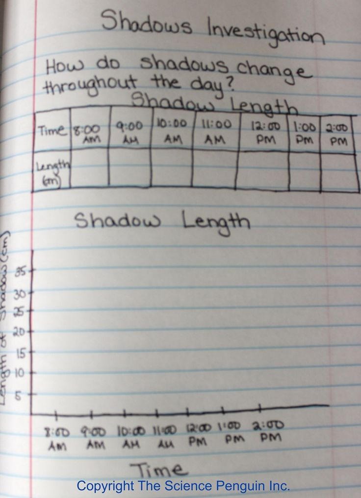 Shadows Investigation {Interactive Science Notebook Photo Gallery}