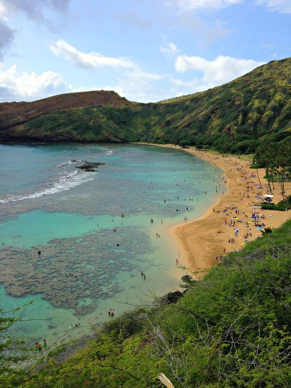 The very best things to see and do on Oahu including snorkeling at Hanauma Bay.