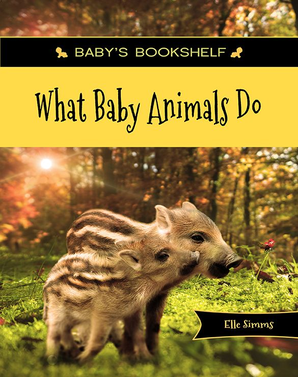 Full color and beautifully photographed, this simple rhyming book is sure to delight children ages 0 -3. What Baby Animals Do features a variety of adorable baby animals in various situations, and pairs the identification of animals with the action they are performing.   KINDLE e-book available.  GET YOUR COPY NOW! Click the picture!