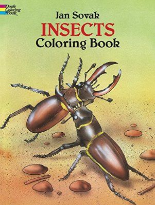 Insects Coloring Book Dover Nature
